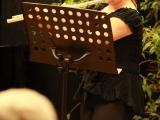 Březnový koncert, 2015_14