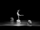 Momentky ze soutěže tanečnic v Ústí nad Orlicí_11